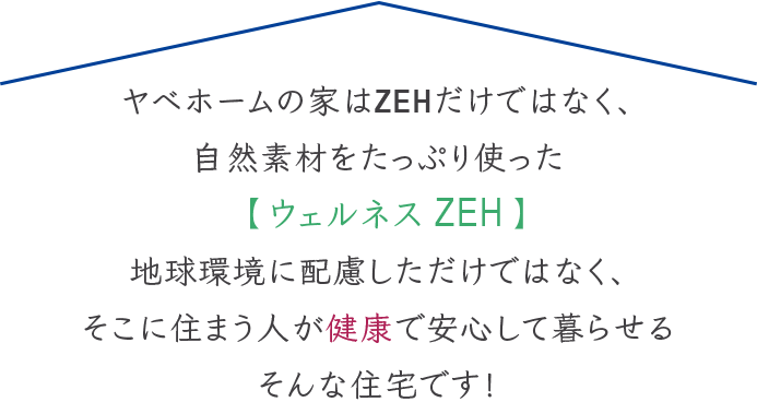 ZEHの説明